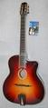 accoustic guitar