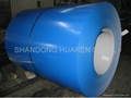 Prepainted galvanized Steel Coil (PPGL STEEL COIL) 2
