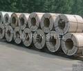 Steel coils stock