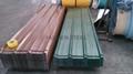 PPGI Steel 3