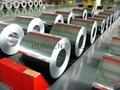 Prepainted Galvanized Steel Coils (PPGI Steel) 3