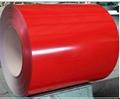 Prepainted Galvanized Steel Sheet 5