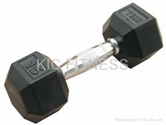 Hex Rubber Coatd Dumbbell (A01)