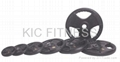 Round Black Rubber Coated Weight Plate