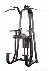 Precor Gym Equipment / Dip & Chin Assist (D07)