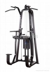 Precor Gym Equipment / Dip & Chin Assist (D07)