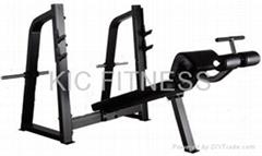 Precor Gym Equipment Olympic Decline Bench (D24)
