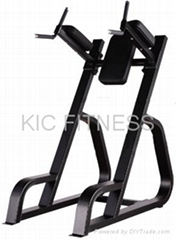 Precor Gym Equipment Vertical Knee Up & Dip (D29)