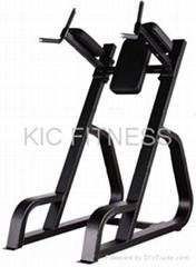Precor Gym Equipment Ver