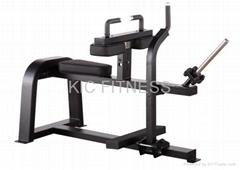 Precor Fitness Machine Seated Calf (D39)