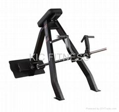Precor Fitness Equipment Incline Level Row (D38)