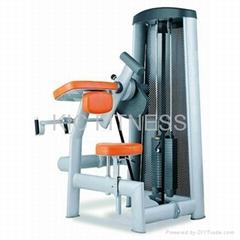 CE Certificated Professional Sports Machine / Seated Biceps Curl (L10)