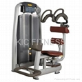 Commercial Fitness Machine Rotary Torso