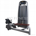 Professional Fitness Equipment Seated