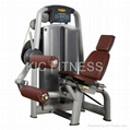 Professional Gym Machine Seated Leg Curl