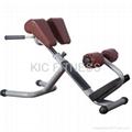Free Weight Fitness Machine Roman Chair