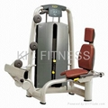 Professional Gym Equipment Rotary Calf