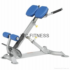 Hoist Gym Equipment Back