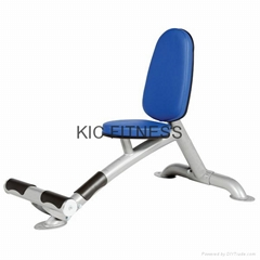 Hoist Gym Fitness Equipment Utility Bench (R1-31)