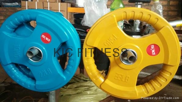 Color Weight Plate