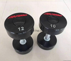 High Quality Lifefitness PU Dumbbell (A02-F)