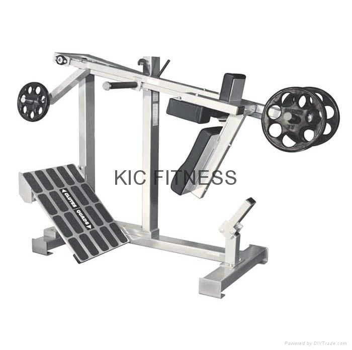 Fitness Equipment Services: Hot Sales Paramount Fitness Equipment Glutes Quads (F1