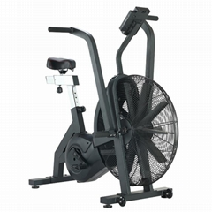 Rogue Echo Assault Air bike (K-8002C)