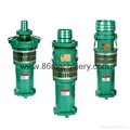 Submersible/Immersible Water Pump