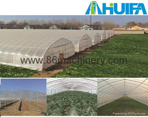 Single Span Tunnel Greenhouse  1