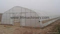 Economical Greenhouse Structure