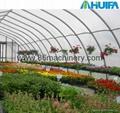 Vegetable/Flower Growing Greeenhouse