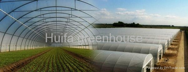 Agricultural Tunnel Film Greenhouse 2