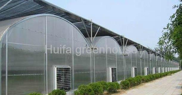 Pc Sheet Polycarbonate Greenhouse  1