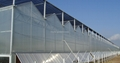 Polycarbonate Sheet Pc Greenhouse