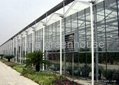 Glass Greenhouse  1