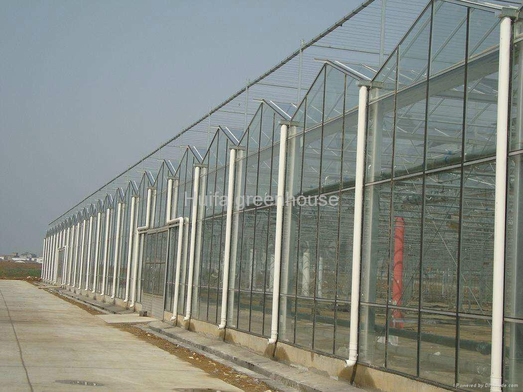 Glass Greenhouse  4