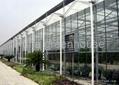 Intelligence Greenhouse