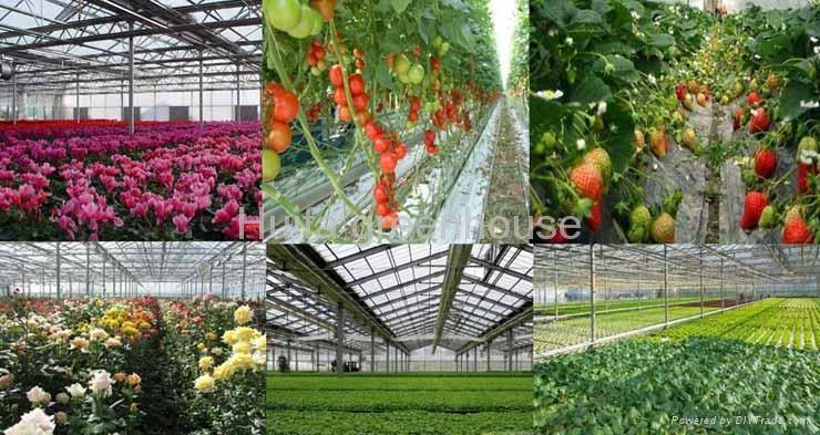 Intelligence Greenhouse  3
