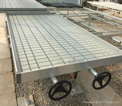 Greenhouse Rolling Bench  2
