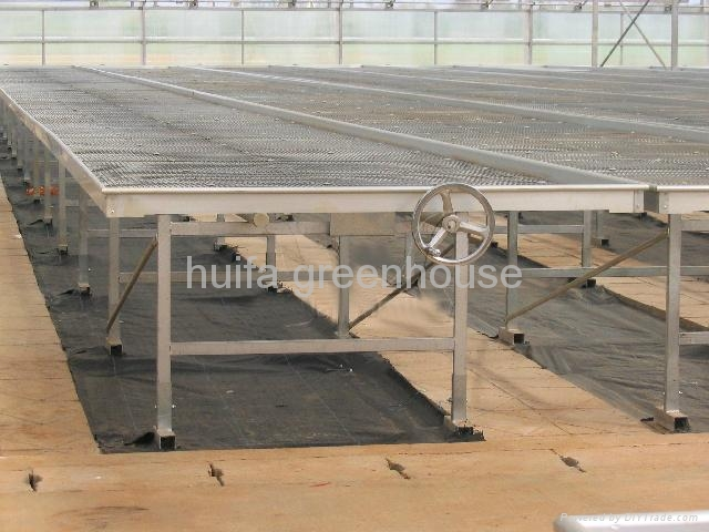 Rolling Benches Greenhouse 3