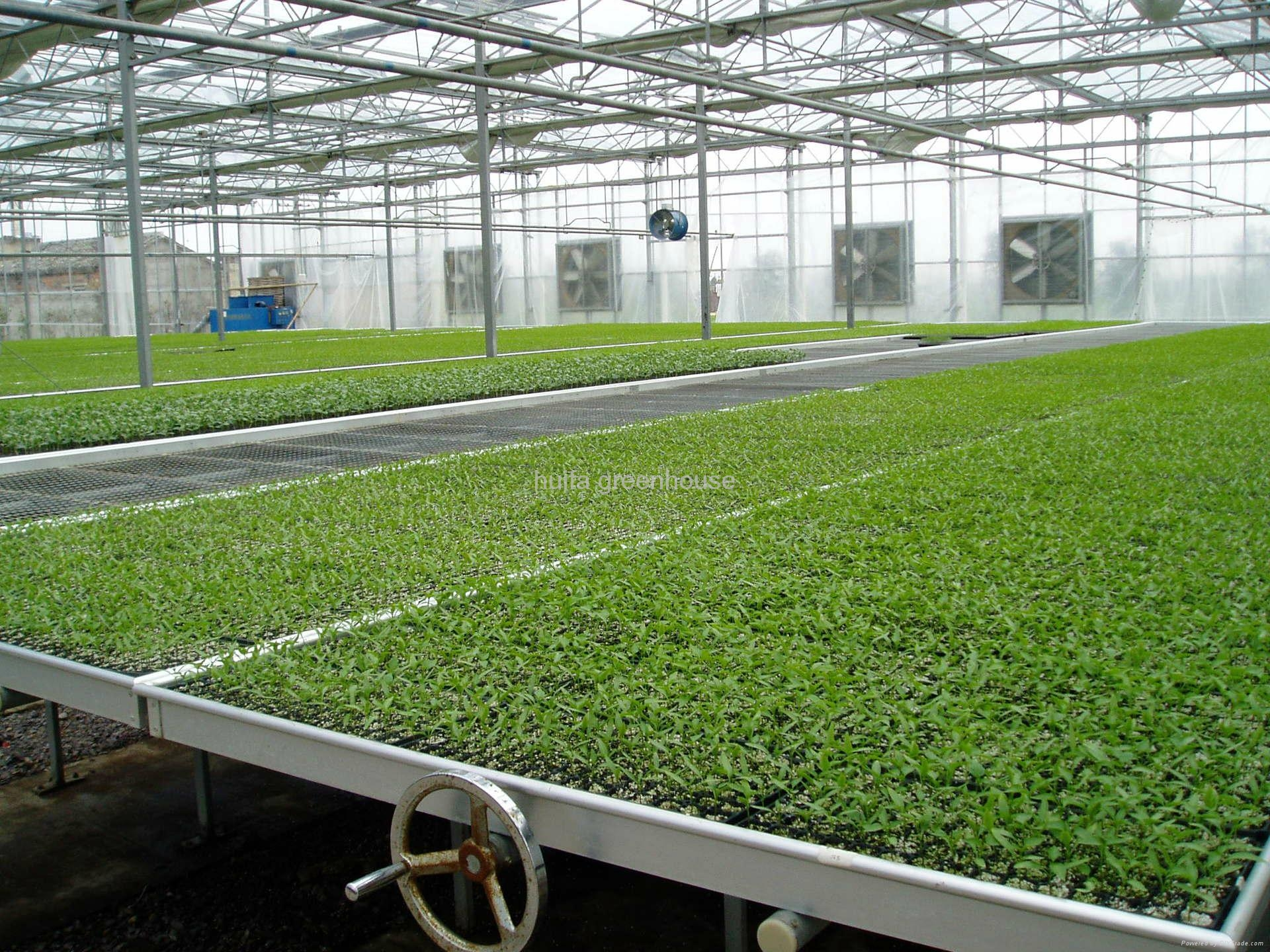 Rolling Benches Greenhouse 1