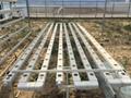 Greenhouse Hydroponics 3