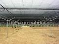 Shading Net Greenhouse