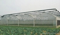 Plastic Film Multi Span Greenhouse 3