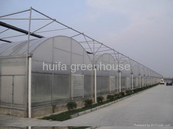 Multi-Span Greenhouse 1