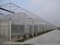 Multi-Span Greenhouse