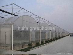 Multi-Span Greenhouse (Hot Product - 1*)
