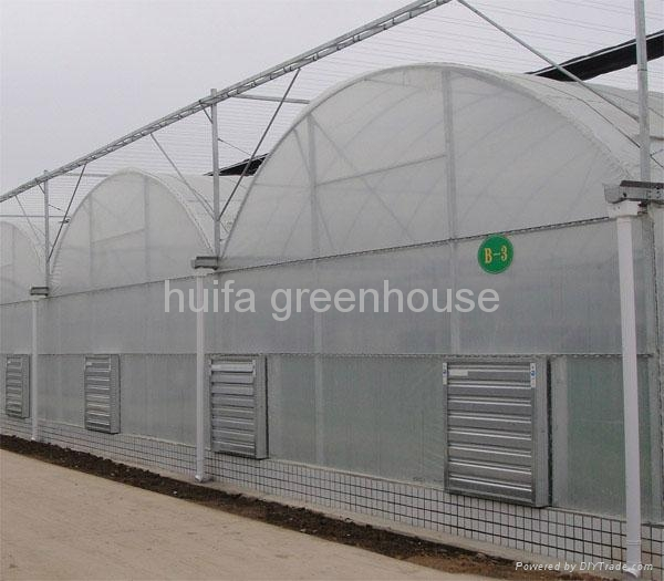 Agriculture Multi Span Greenhouse 3