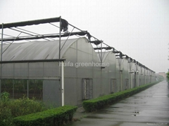 Agriculture Multi Span Greenhouse