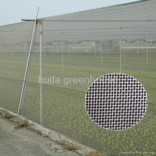 Anti Insect Net Greenhouse 2